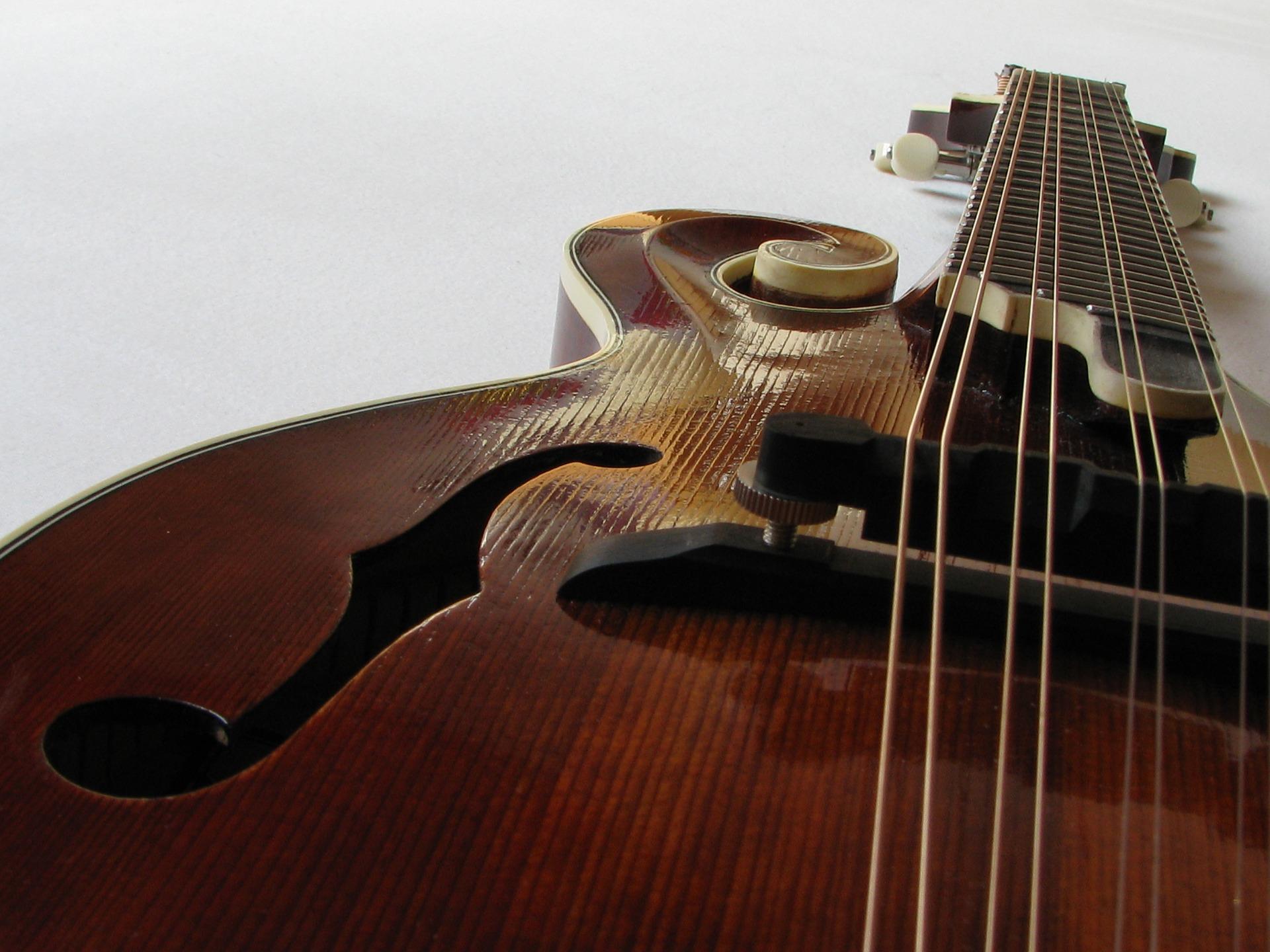 Online Beginner Mandolin Lessons - Mandolin Course from the Beginning