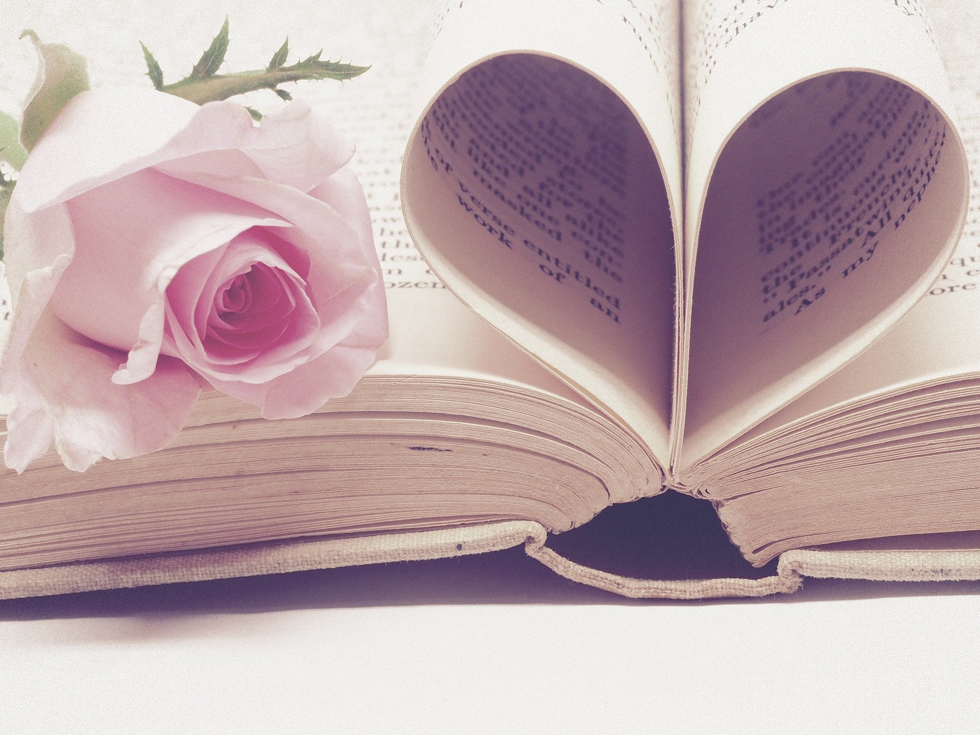 Valentines Day Writing Prompts Lesson Pros 365